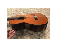 Suzuki Classical Guitar -- Excellent Condition, Great Price!