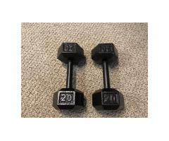 Pair of 20 pound Dumbbells Weights -- Low Price!